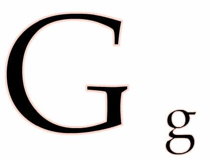 近反义词g