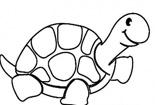 可爱动物简笔画大全-懒懒的乌龟