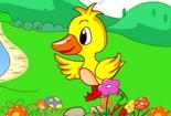 原创童话故事小花鸭和小麻雀