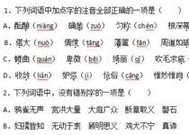 青海省西宁2017年中考语文真题及答案