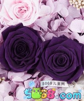 感恩节鲜花礼盒精美图片