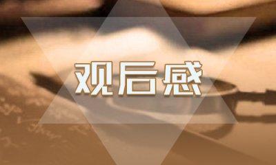 2020《中國女排》最新觀后感影評5篇_看中國女排有感