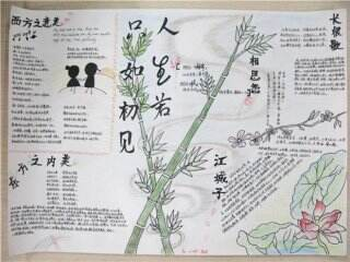 2020小學生趣味語文手抄報