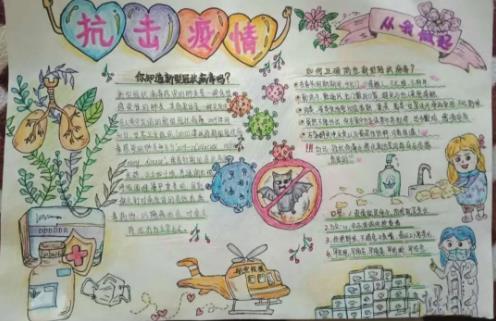 抗擊疫情從我做起小學生手抄報優秀作品