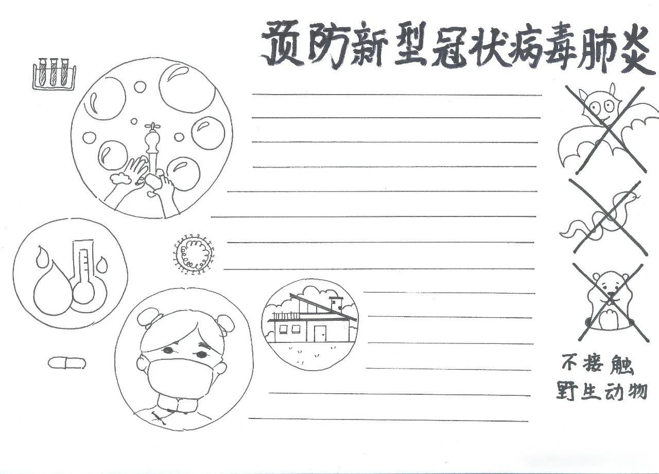 2020新型冠状病毒设计图_新型冠状病毒肺炎防控常识手抄报