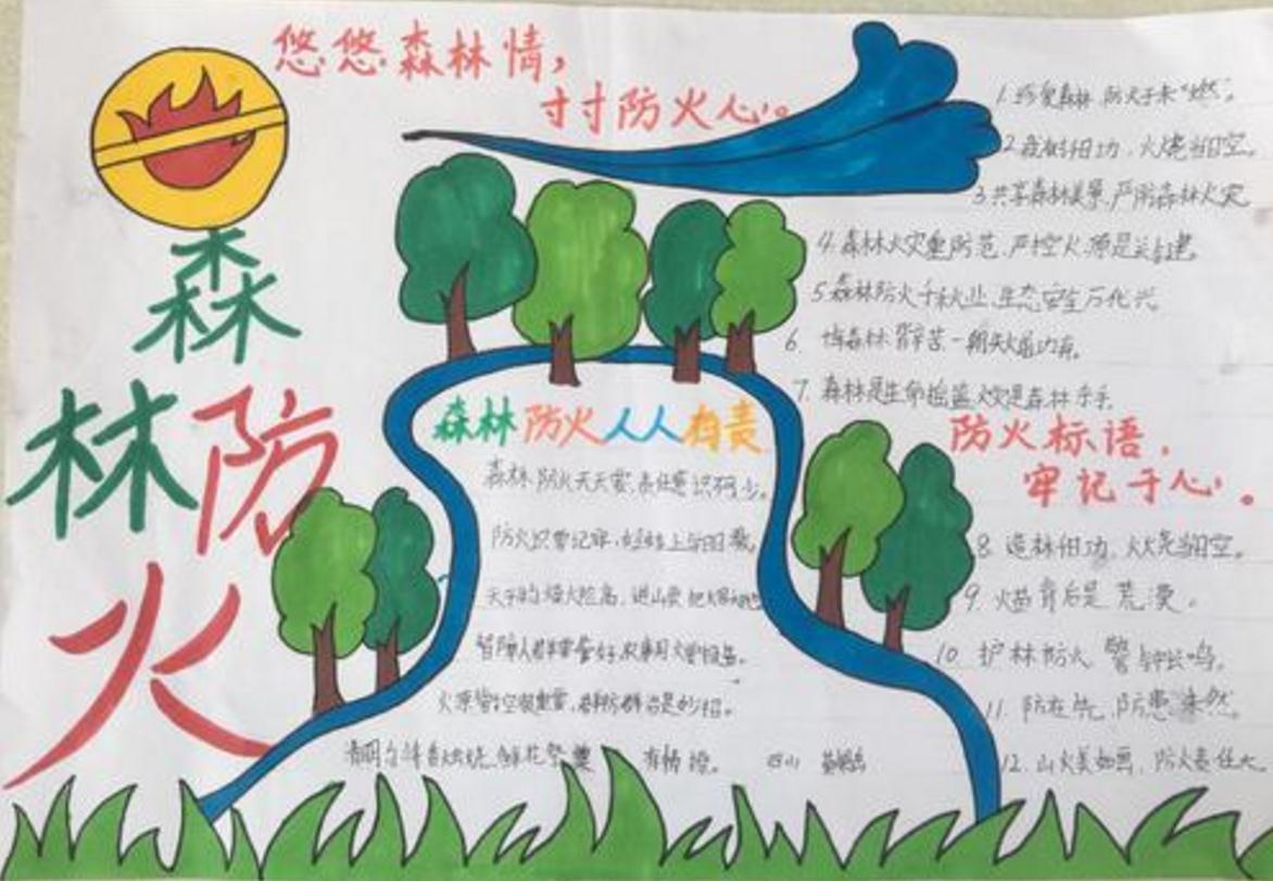2020清明节森林防火手抄报图片大全