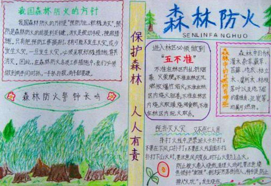 森林防火儿童绘画手抄报图片