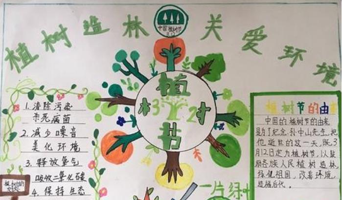 植树造林关爱环境植树节手抄报绘画
