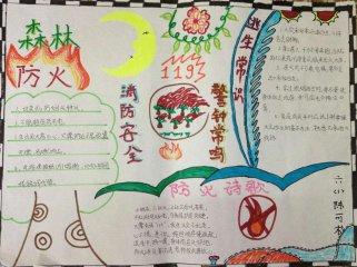 森林防火手抄报简单又漂亮_小学生森林防火手抄报