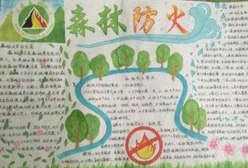 2020最新森林防火手抄报简单又漂亮