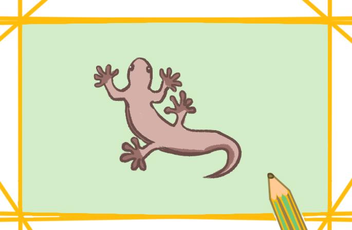 爬行动物之壁虎上色简笔画图片教程