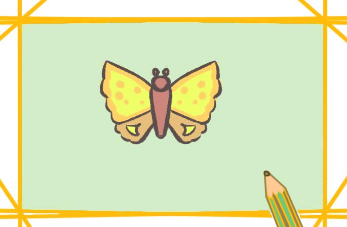 美丽的飞蛾上色简笔画要怎么画