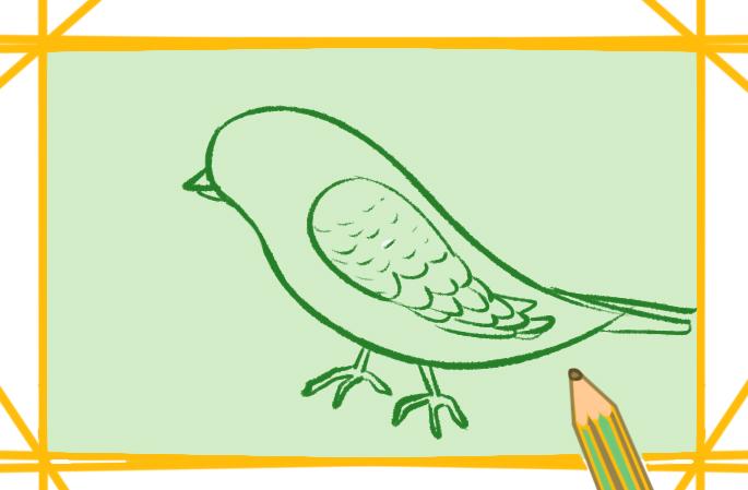美丽的鸟儿简笔画图片教程