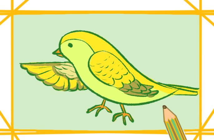 漂亮的黄鹂鸟简笔画图片要怎么画