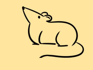 鼠年老鼠簡筆畫怎么畫