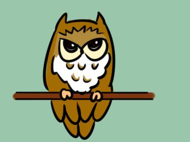 夜行动物猫头鹰儿童简笔画要怎么画