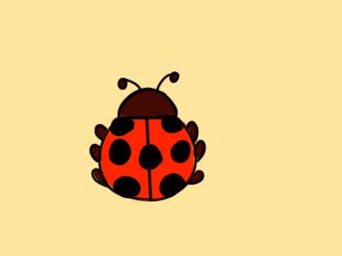 可爱的七星瓢虫简笔画要怎么画