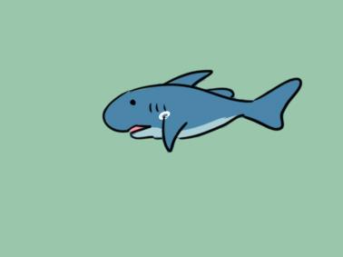 可爱的鲨鱼简笔画图片大全