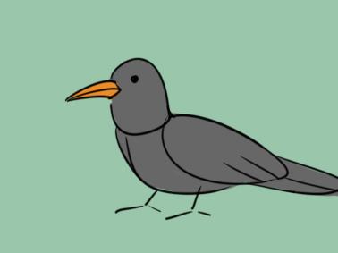漆黑的乌鸦简笔画要怎么画