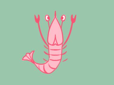 漂亮的河虾涂色简笔画要怎么画 最新简笔画 5068儿童网