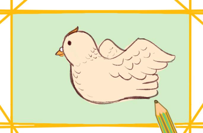 可爱的鸽子最新简笔画图片教程
