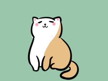 可爱的花猫简笔画教程步骤图