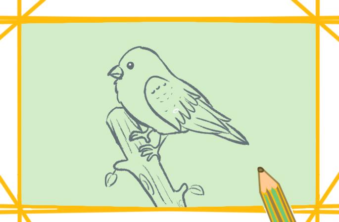 漂亮的鸟上色简笔画图片教程