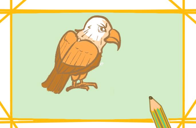 猛禽之老鹰简笔画图片教程