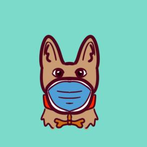 戴口罩的宠物狗狗简笔画怎么画