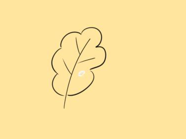 碧绿的小叶子简笔画怎么画