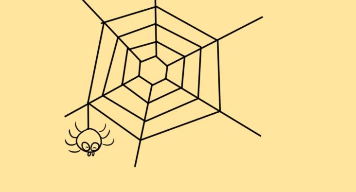 蜘蛛织网简笔画要怎么画