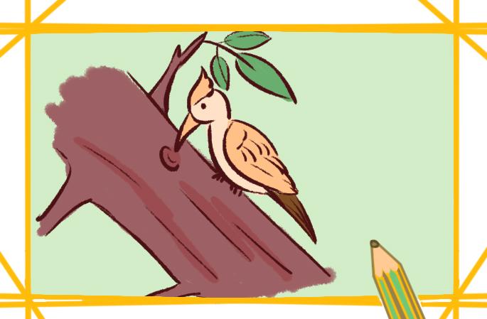 漂亮的啄木鸟简笔画要怎么画