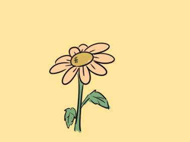 簡單好看的雛菊簡筆畫要怎么畫