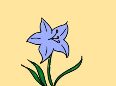 紫色的花简笔画要怎么画