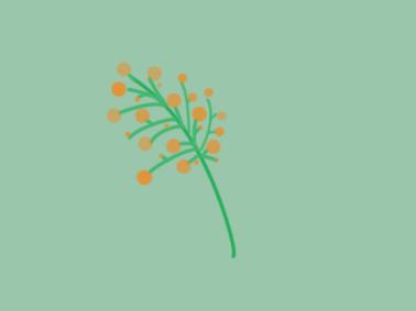 小清新花朵简笔画要怎么画
