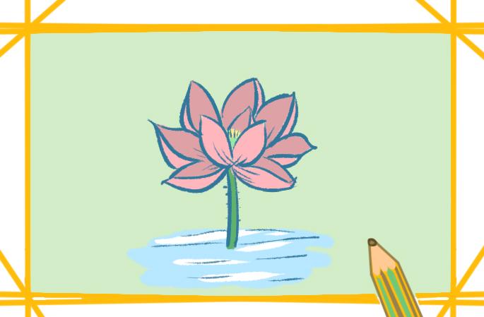 夏天的莲花简笔画要怎么画