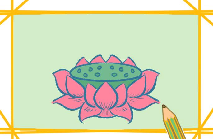 典雅的莲花简笔画原创教程步骤