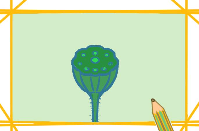 莲花的莲蓬简笔画图片教程