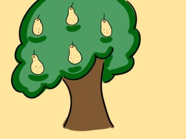 高大的梨树简笔画要怎么画