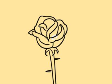 鲜花之玫瑰简笔画原创教程步骤 5068儿童网