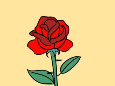 鲜花之玫瑰简笔画要怎么画