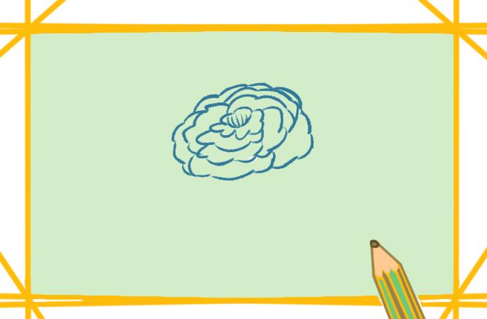 美丽的牡丹简笔画要怎么画
