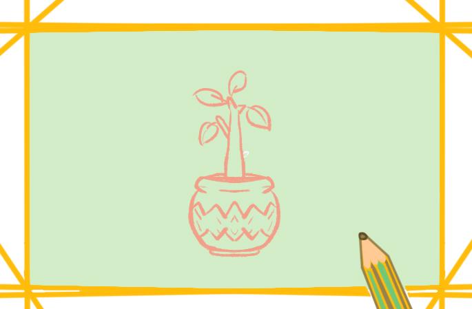 朴素的盆栽简笔画图片教程