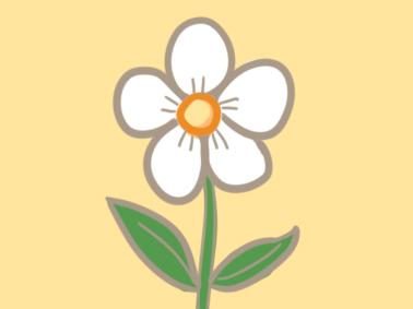 漂亮的鲜花简笔画要怎么画