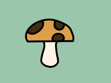 植物之蘑菇简笔画小学生要怎么画
