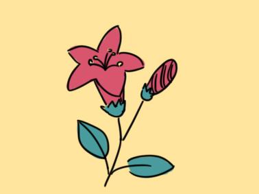 美丽的花简笔画要怎么画