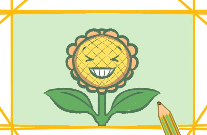金黄色的向日葵上色简笔画图片教程