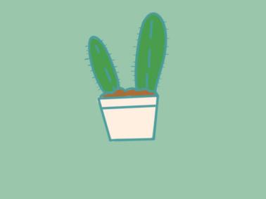 植物之仙人掌小学生简笔画要怎么画