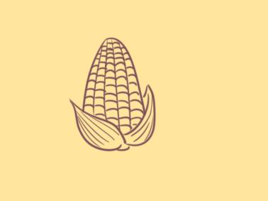 饱满的玉米简笔画要怎么画