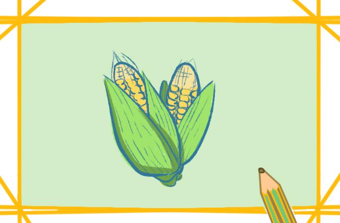 金黄色玉米上色简笔画图片教程